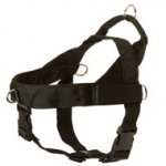 Boxer Harness Nylon with Patches