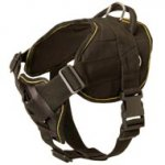 Nylon Boxer Harness for Pulling Tracking Training