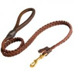 Boxer Leather Braided Dog Leash