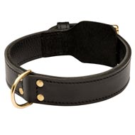 Training 2 Ply Leather Boxer Collar