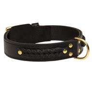 Incredible Design Boxer Braided Leather Collar