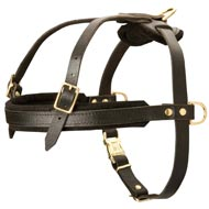 Leather Boxer Harness for Tracking and Pulling