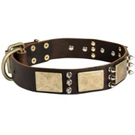 Designer War-Style Leather Boxer Collar with Spikes and Plates