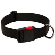 Any-Weather Nylon Boxer Collar With Quick Release Buckle for Training and Walking