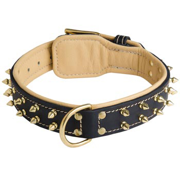 Leather Boxer Collar Spiked Padded with Nappa Leather Adjustable