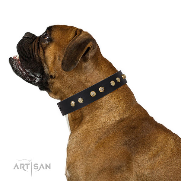 Unique adornments on daily use full grain natural leather dog collar
