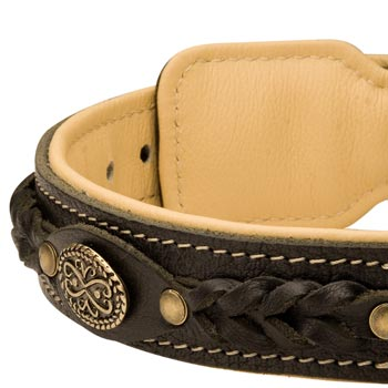 Leather Walking Fashion Collar for Boxer