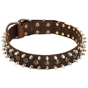 Boxer Leather Collar with Stylish Decoration