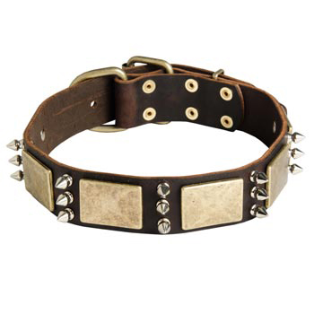 War-Style Leather Dog Collar for Boxer