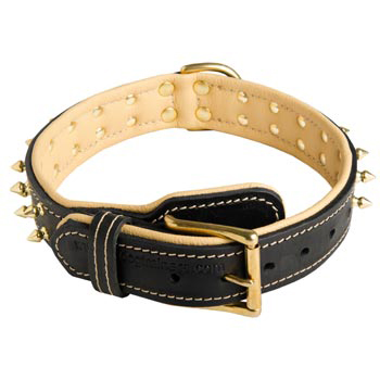 Leather Dog Collar Spiked Adjustable for Boxer Walking