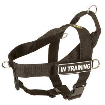 Boxer Nylon Harness with ID Patches