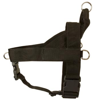 Boxer Harness Nylon for Comfy Walking