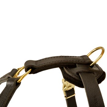 Corrosion Resistant D-ring of Boxer Harness