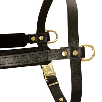 Training Pulling Boxer Harness with Sewn-In Side D-Rings