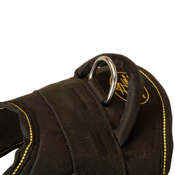Heavy Duty Handle of Boxer Harness