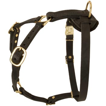 Tracking Leather Dog Harness for Boxer