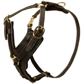 Comfortable Y-Shaped Leather Harness for Boxer Attack  Training