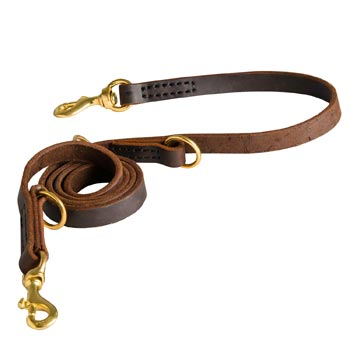 Strong Leather Leash for Boxer Successful Training