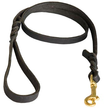 Training Leash for Boxer