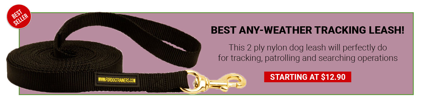 Nylon Boxer Leash for Tracking and Training
